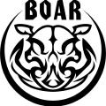 Boarw Wheel